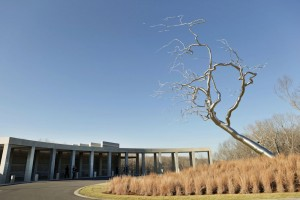 As art patrons visit the new Crystal Bridges Museum of American Art in Bentonville they will see an instillation by artist Roxy Paine.